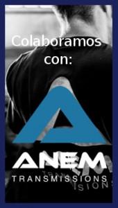 banner_anem